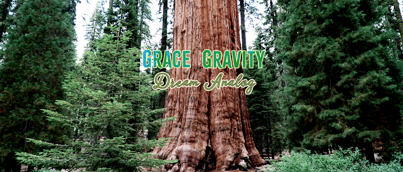 GraceGravity.com